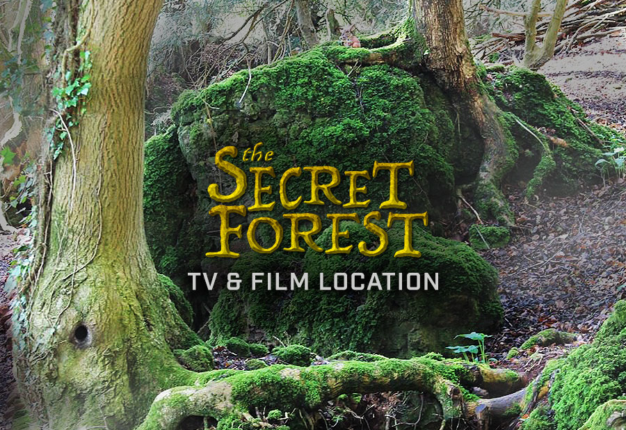 The Secrect Forest Movie Location